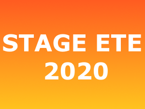 INFORMATION STAGE D'ETE 2020