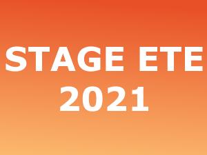 Stage d'été 2021